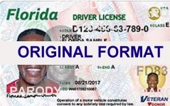 Florida ID Hologram http://www.peiid.com/alabama_driver_license.htm
