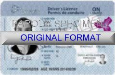 ontario fake driving license, fakeids, ontario novelty id, fake driving license ontario